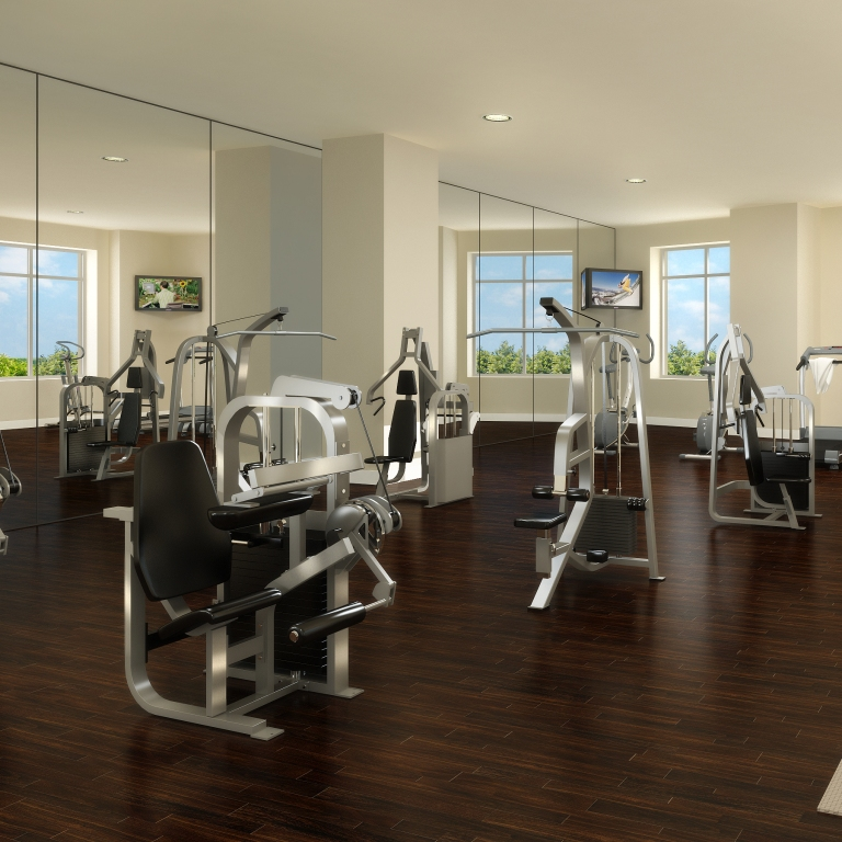 Gym Mats South Africa: Looking For Gym Equipment South Africa?