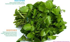 Watercress Reverses Exercise Damage